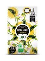 Dayang Oui Tea Gingembre Citron Bio 20 Infusettes à MULHOUSE