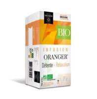 Dayang Oranger Bio 20 Infusettes à MULHOUSE
