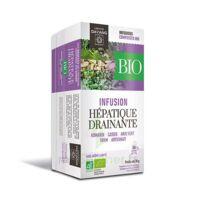 Dayang Hépatique Drainante Bio 20 Infusettes à MULHOUSE
