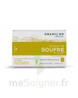 Granions De Soufre 19,5 Mg/2 Ml S Buv 30amp/2ml à MULHOUSE
