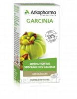 Arkogélules Garcinia Gélules Fl/45 à MULHOUSE