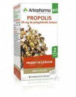 Arkogélules Propolis Bio Gélules Fl/45
