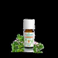 Puressentiel Huiles Essentielles - Hebbd Thym à Thujanol Bio* - 5ml à MULHOUSE