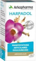 Arkogelules Harpagophyton Gélules Fl/150 à MULHOUSE