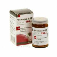 Vitamine B12 Gerda 250 Microgrammes, Comprimé Sécable à MULHOUSE