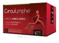 Santé Verte Circulymphe Triple Actions B/30 à MULHOUSE