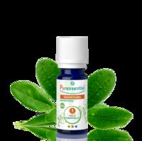 Puressentiel Huiles essentielles - HEBBD Ravintsara BIO* - 5 ml à MULHOUSE