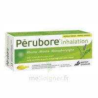 Perubore Caps Inhalation Par Vapeur Inhalation Plq/15 à MULHOUSE