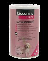 Biocanina Lait poudre maternisé B/400g à MULHOUSE