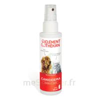 Clément Thékan Caniderma Solution externe cicatrisant Spray/125ml à MULHOUSE