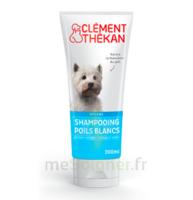 Clément Thékan Shampooing poils blancs T/200ml à MULHOUSE