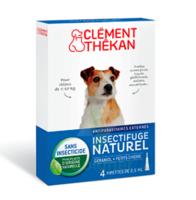 Clément Thékan Spot-on Solution externe petit chien 4 Pipettes/2,5ml à MULHOUSE