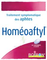 Boiron Homéoaftyl Comprimés à MULHOUSE