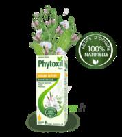 Phytoxil Toux Sans Sucre Sirop Adulte Enfant +2 Ans Fl/120ml à MULHOUSE