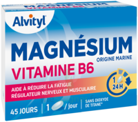 Govital Magnésium Vitamine B6 Comprimés B/45 à MULHOUSE