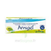 Boiron Arnigel Gel T(alumino-plastique)/45g à MULHOUSE