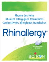 Boiron Rhinallergy Comprimés B/40 à MULHOUSE